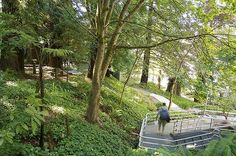humboldt state university campus housing - Google Search