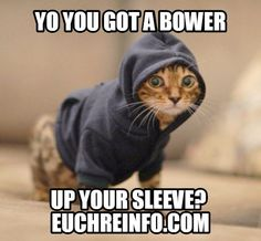 Yo you got a bower up your sleeve?