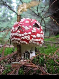 Fairy toadstool house                                                                                                                                                     More