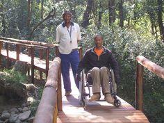 The Kologha Forest boardwalk