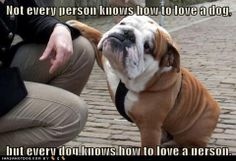 Every dog knows how to Love a human.