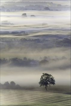 Vale of Pewsey, Wiltshire Source A beautiful misty morning on the Vale of Pewsey.