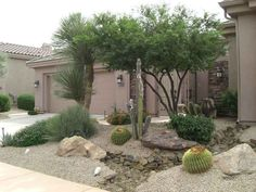 Arizona desert front yard xeriscaping idea with a fake dry stream bed, large decorative boulders, gravel ground cover, native plants, and cactus. Xeriscaping would be flat without the natural sculpture rock and boulders add to the xeriscape in this Peoria, AZ. front yard design.