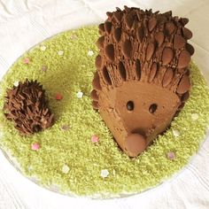 How to make a chocolate hedgehog cake - Delicious Hedgehog Cake, Hedgehog Birthday, Chocolate Buttons, Cool Birthday Cakes, Birthday Parties, Birthday Treats, Birthday Celebrations, Chocolate Sponge Cake, Biscuits