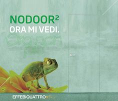 NO DOOR..ORA MI VEDI,ORA NON PIU' / NO DOOR..NOW YOU SEE ME, NOW YOU DON'T #nodoor #camouflage #nature #natureismagic #lamagiadellanatura #camaleonte #bedifferent #expressyourself #effebiquattro #effebiquattromilano #creatoridiporte #aziendastraordinaria #milanodesign #interiordoors #interiordesign #instarchitecture #madeinitaly #porte #italiandesign #architecture #architecturelover #porteinlegno #woodendoor