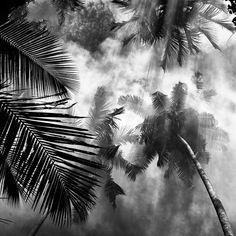 Black And White Nature Photography Dans un style reconnaissable et proches de ces séries dont nous avons pu vous parler, le photographe indonésien Hengki Koentjoro prend en photos des tonnes de paysages en noir et blanc et parvient à capturer une très belle lumière dans un joli contraste où les protagonistes ne sont plus que des ombres.