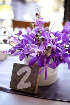 purple orchid love