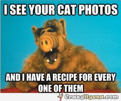 I see your cat photos. | Funny Pictures, Quotes, Photos, Pics, Images. Free Humorous Videos and Facebook Covers