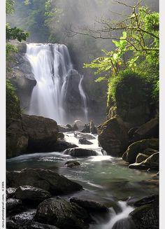 Jungle Treks & River Swims (Taiwan)…