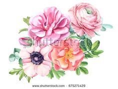 Wedding Bouquet of beautiful flowers, roses, anemones, ranunculus, watercolor illustration Watercolor Drawing, Watercolor Illustration, Watercolor Flowers, Watercolor Paintings, Baby Food Jar Crafts, Ranunculus Flowers, Art Clipart, Flower Tattoos, Painting Inspiration