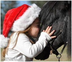 Good evening #equestrianhour :-) Been a while - it's a busy time! Thought we'd pop in & say hi. 8 sleeps til Santa!