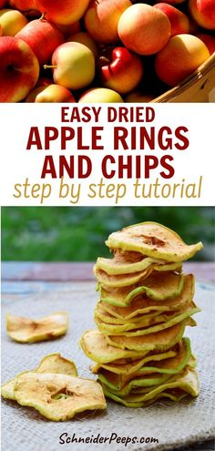 Love dried apples? Dehydrating apples at home will allow you to get the flavor and crispiness you love without spending a fortune. It's super simple. Apple Dehydrated apples make a great snack or can be used in baking. Learn how to make homeamde dried apple rings and chips in this step by step guide. #fromscratch  #preservingfood #simpleliviving Dehydrated Apples, Dehydrated Food, Dried Apple Rings, Homemade Jelly, Dried Vegetables, Apple Chips, Dried Apples, Dehydrator Recipes, Fermented Foods
