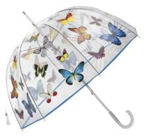 Clear butterfly umbrella