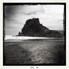 Lion Rock, Piha Beach, Auckland, October 2013