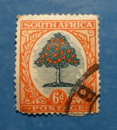 6d South Africa - Orange Tree