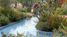 Australian Native Garden Inspiration - Gardening Australia - Fact Sheet: The Chelsea Flower Show 2011
