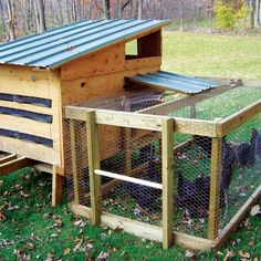 Country Lore: DIY Portable Chicken Coops