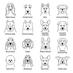 Dog Face Drawing, Drawing Art, Small Dog Tattoos, Dogs Tattoo, Papa Shirts, Art Graphique, Animal Tattoos, Tattoos Skull, Dog Portraits