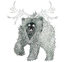 Bear AM