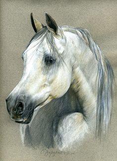 Gray beauty...goood art work...