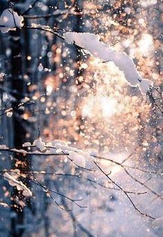 Luz de invierno rosa