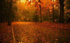 Autumn. :)