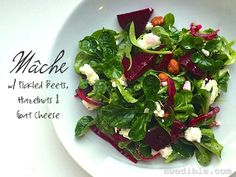 Mache salad...a great green treat in the depth of winter!