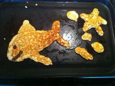 Pancake killer whale?