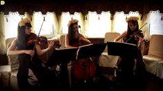 Теплоход, старинная музыка - струнное трио Violin Group DOLLS