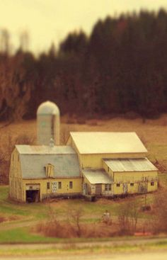 While I usually think all barns must be red, I have to admit there is something peaceful about this yellow barn! ♥
