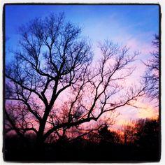 January skies.