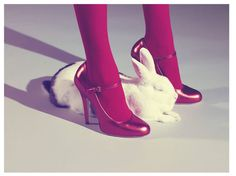 Miles Aldridge / red tights white bunny