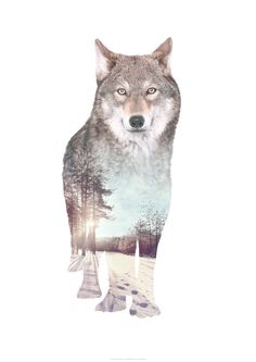 Faunascapes WOLF Animal Double Exposure Art Print by WhatWeDo. Available at etsy.faunascapes.dk