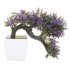 MyGift Purple Blossom Artificial Bonsai Tree Faux Potted Plant w White Planter >>> Click on the image for additional details. (This is an affiliate link and I receive a commission for the sales)