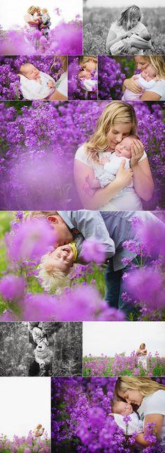 edmonton-newborn-family-photography | flower field outdoor newborn/baby shoot!