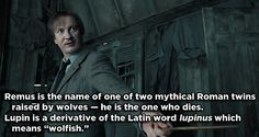 Remus Lupin - Harry Potter | 17 Famous Characters With Hidden Meanings In Their Names