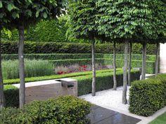 Gorgeous formal contemporary garden by Luciano Giubbilei
