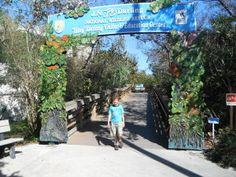 Road trip around Florida Sanibel and Captiva Day 5 - Exploramum & Explorason
