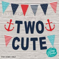 Two Cute pennant banner Two years old Second Birthday
