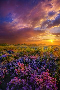 Life Is Measured In Moments By Phil Koch - (flickr)