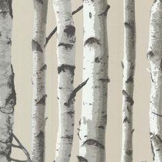 Brewster Irvin Birch Tree Wallpaper - 2532-20418