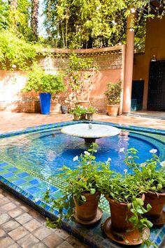 Le jardin Majorelle, Marrakech - Morocco Why Wait?   #WhyWaitTravels www.whywaittravels.com