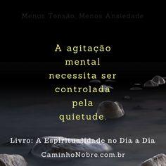 A agitação mental necessita ser controlada pela quietude . Livro A Espiritualidade no Dia a Dia