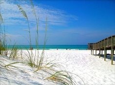 Beautiful, Mexico Beach, Florida (along the forgotten coast) panhandle area. Cleanest and most natural beaches in Florida!