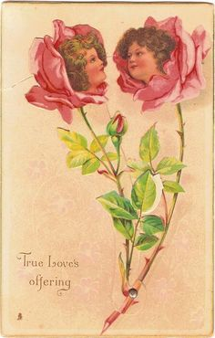 TRUE LOVE'S OFFERING / A THOUSAND KISSES  two roses with girls faces