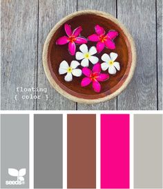 Floating Color: Gray tones with a rusty brown accent and a hot pink pop