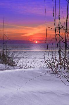 Gorgeous Beach Sunset