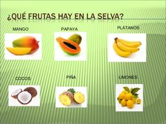 Proyecto La selva amazónica Costa Rica, Sierra, Fruit, Mario, Animals, Food, Brazil, Animals Of The Rainforest, Wild Animals