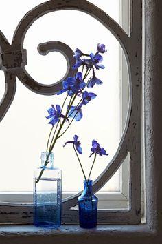 Méchant Studio Blog: Indigo needed My Flower, Flower Vases, Flower Power, Flower Arrangements, Fresco, Holland, Beautiful Flowers, Beautiful Pictures, Blue Is The Warmest Colour