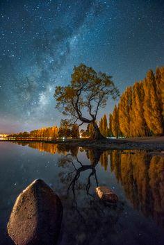 一棵树之夜 - 新西兰,瓦纳卡湖,一棵树的星空。。。